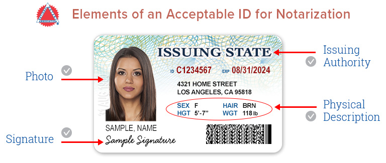 Replica - Diego Notary-id-requirements San